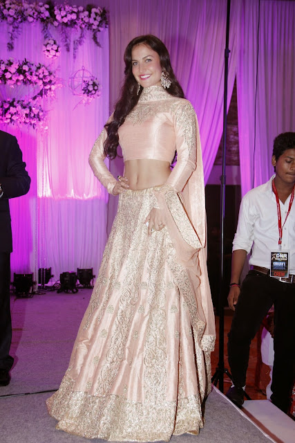 Elli Avram and Ameesha Patel Sexy Stills From Karishma Jain's Wedding Reception