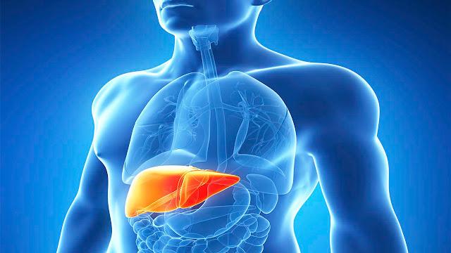 Obat Generik yang Ampuh untuk Mengobati Penyakit Liver