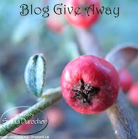 http://smdgreetings.blogspot.ca/2017/01/blog-give-away-self-development-plans.html