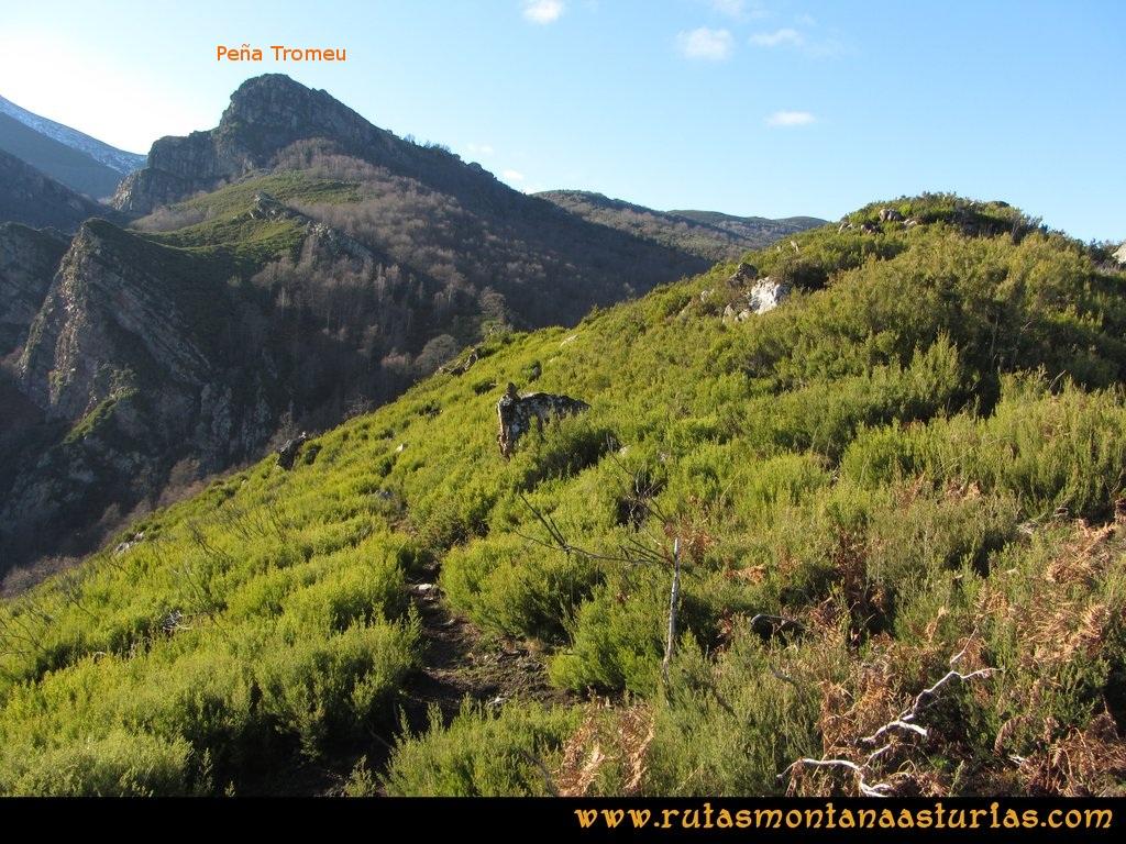 Ruta Tromeu y Braña Rebellón: Sendero hacia el bosque de hayas