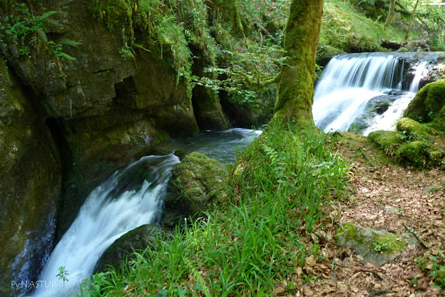 Cascada en las Foces del Río Infierno