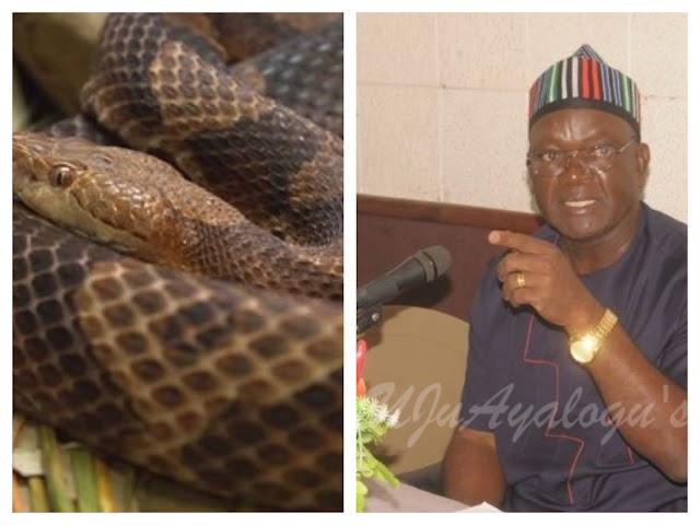 I dread snakes, I don't own snakes farm ―Ortom
