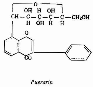 Thành phần hóa học Sắn Dây - Pueraria thomsoni - Nguyên liệu làm thuốc Chữa Cảm Sốt