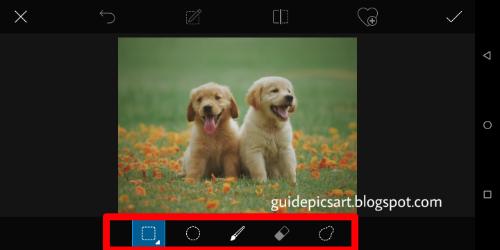 PicsArt Selection Tool Step 3