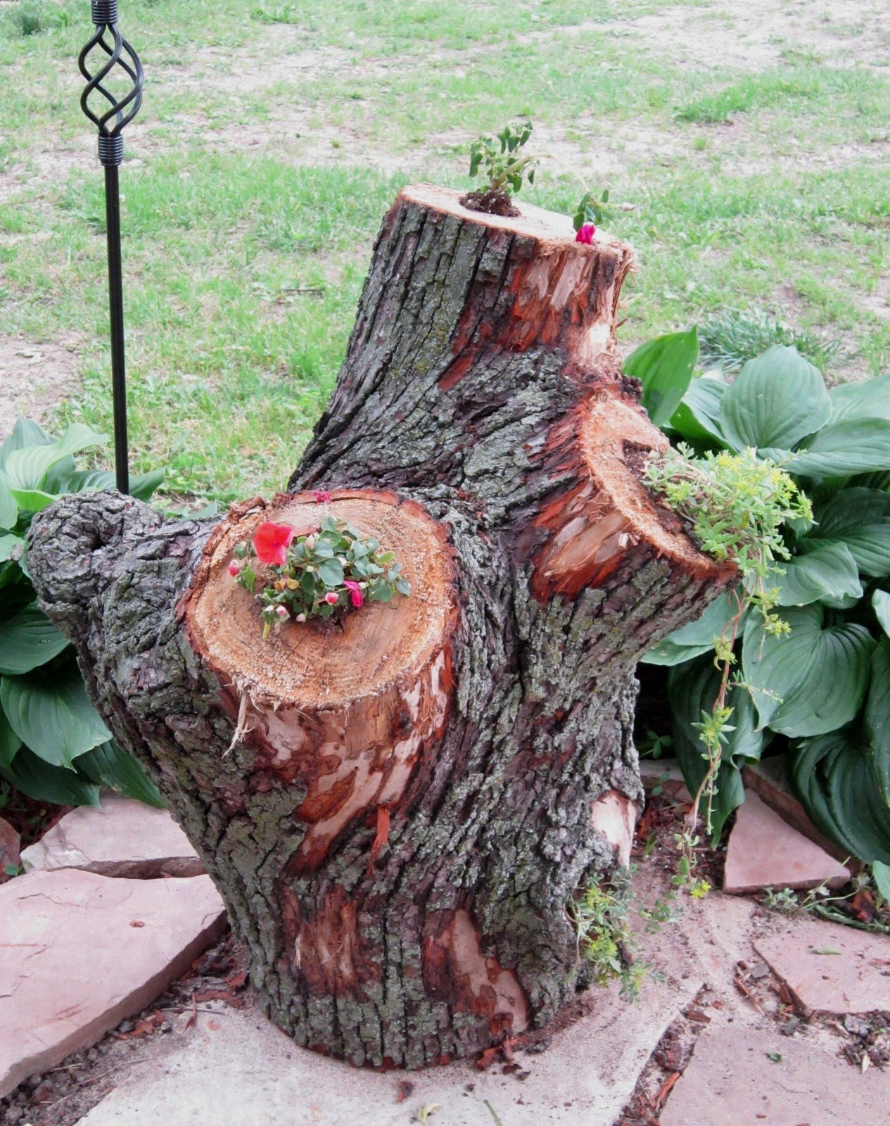 Garden Views Stump Planters And Squirrels Tarnished Royalty