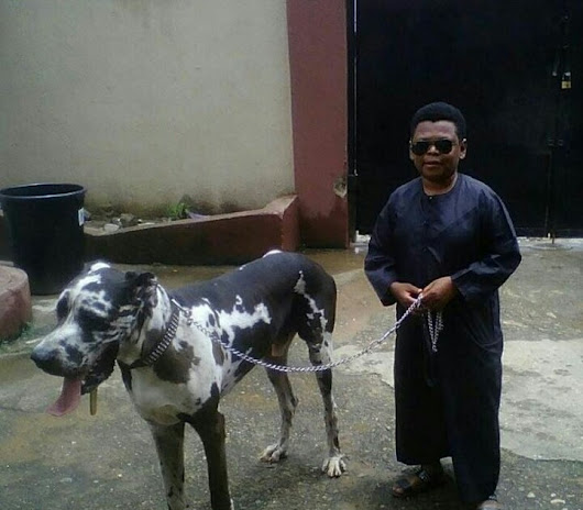 Nollywood Actor Osita Iheme (Paw-Paw) and His Giant Dog