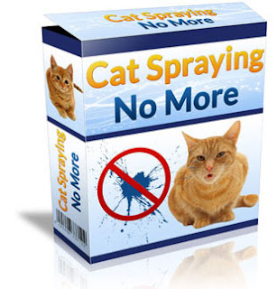 How to make a cat do not pee in the house