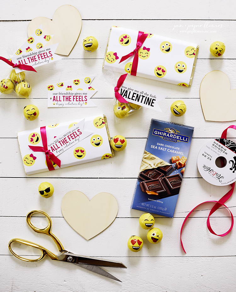 FREE | All The Feels Emoji Themed Valentine