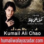 http://www.humaliwalayazadar.com/2016/08/kumail-ali-chao-nohay-2011-to-2017.html