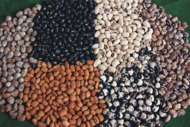 Nigeria Can Produce 4m Tonnes of Cowpea Annually – Farmer