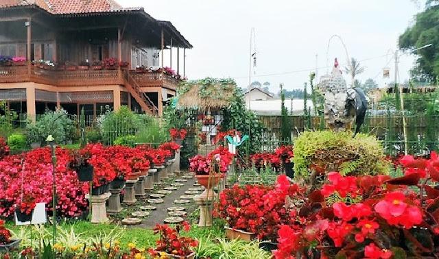 7. Taman Begonia