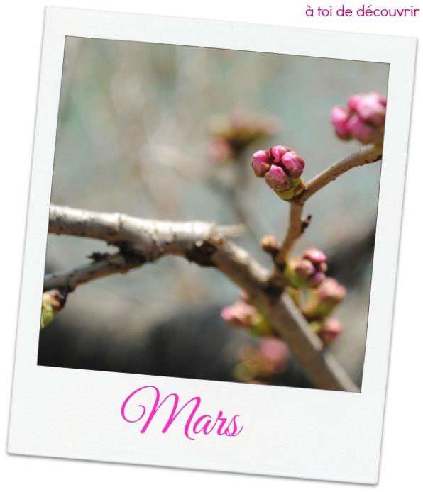 Risultati immagini per bienvenu mois mars