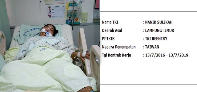 TKW Asal Lampung Ini Hanya Bisa Kasih Isyarat Mata di ICU Mackay Hospital, KDEI Harus Turun Tangan