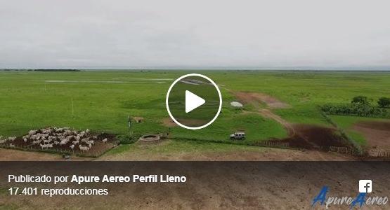 VIDEO: Cajón de Arauca apureño por Apure Aéreo.