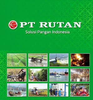 PT Rutan Group