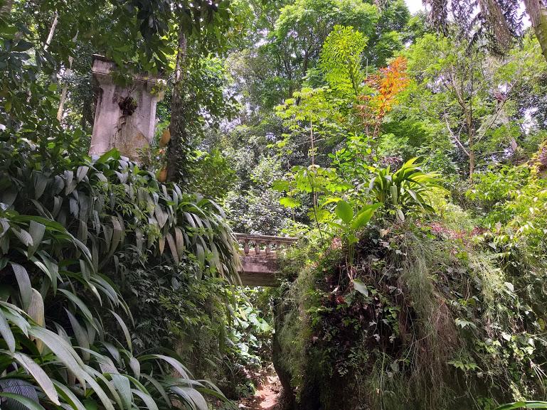 Parque Lage - Ponte