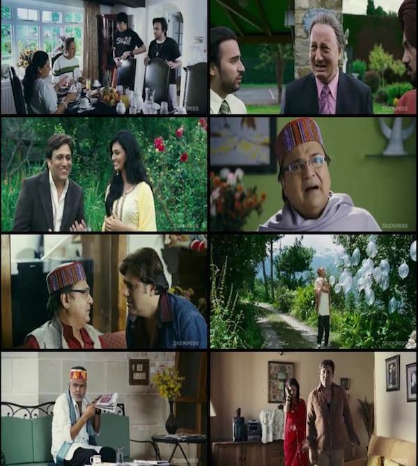 Naughty @ 40 (2011) Hindi Movie HDRip 430MB
