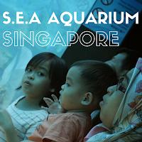 http://babynadra.blogspot.my/2014/01/sea-aquarium-malaysian-mommy-review-day.html