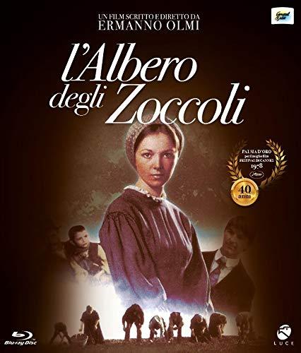 L'Albero Degli Zoccoli Home Video