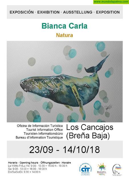BIANCA WELSCH: Exposición