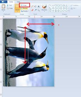 Cara Merubah Ukuran Foto