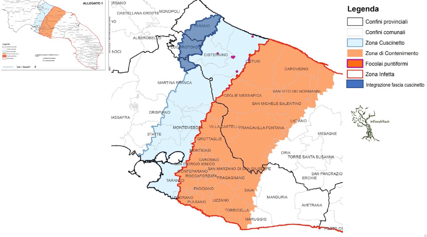 xylella buffer zone expands northward into bari province