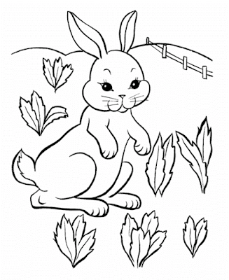 Gambar mewarnai kelinci - 7