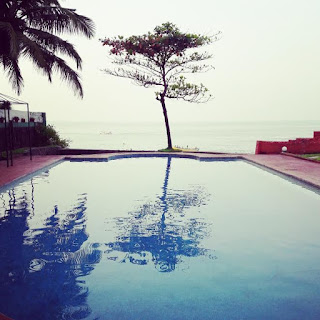 Lone tree, Swimming pool, tree by the pool, ocean