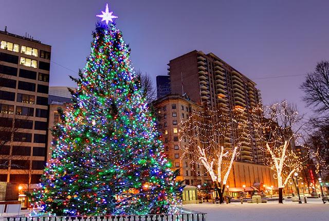 Christmas Tree Photos Images Xmas Tree lighting decoration