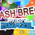 CD FLASH BREGA (SITE MELODY BRAZIL) - DJ RYAN MIX