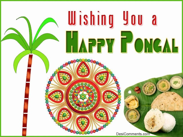 Happy pongal 2017 wishes in english