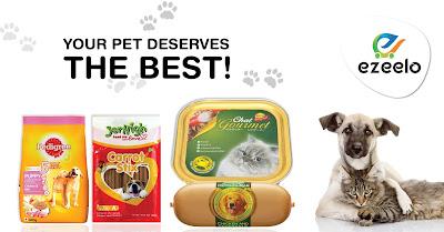 Pet food online lucknow