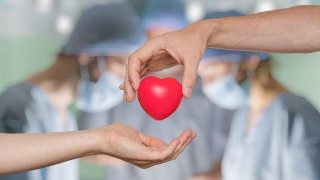 ¿Qué órganos podemos trasplantar y cuáles no?