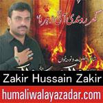 https://www.humaliwalyazadar.com/2019/01/zakir-hussain-zakir-nohay-ayyam-e.html