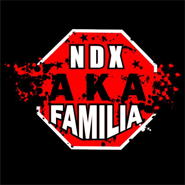 Hasil gambar untuk ndx aka logo