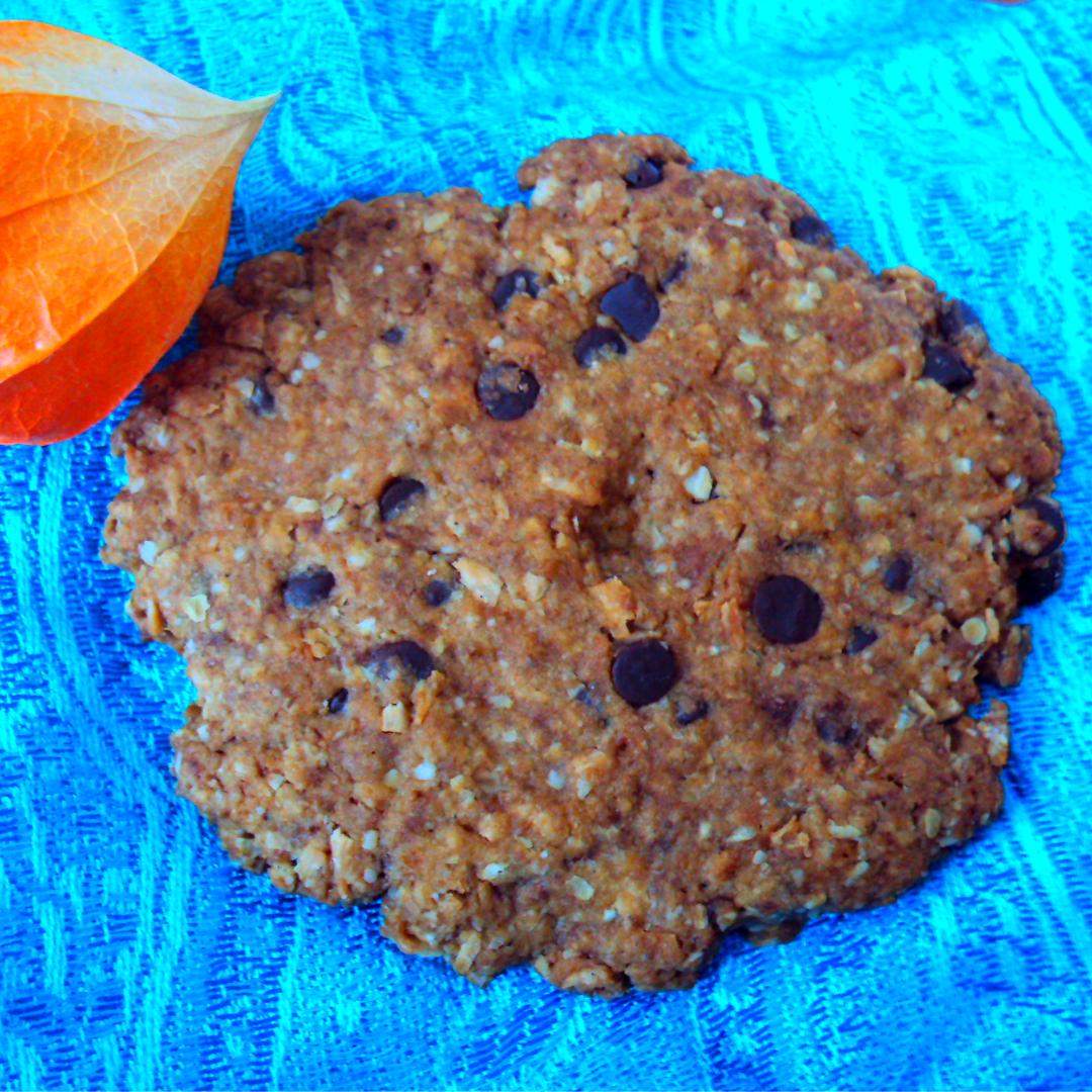 Biscuits très croustillants à l'avoine, noix de coco et sucre de coco (vegan, végétalien, index glycémique bas, sans beurre, sans lactose, sans oeuf)