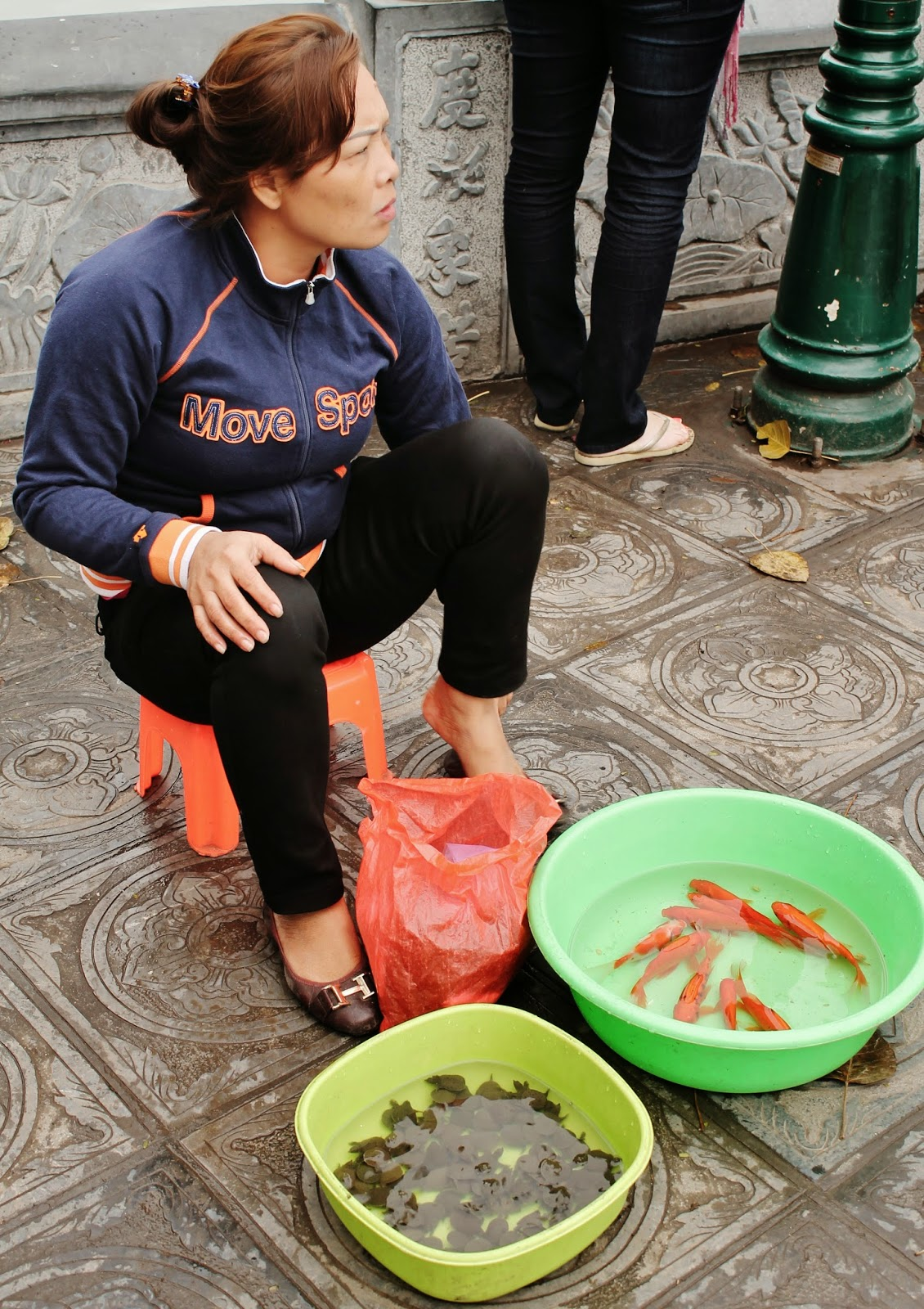 f7f34fd9262 Random lady selling goldfish and baby turtles in Hanoi. I guess it s  considered good luck to buy and release a turtle or fish back into the wild.