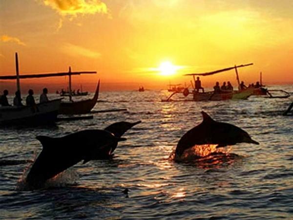 Pantai Lovina - Wisata yang ada di Bali Utara