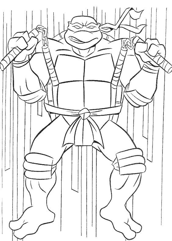 Dibujos Animados De Tortugas Ninja Cinturon Seguridad Embarazada