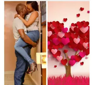 Nice Valentine day Messages That Will Melt Your Partner's Heart