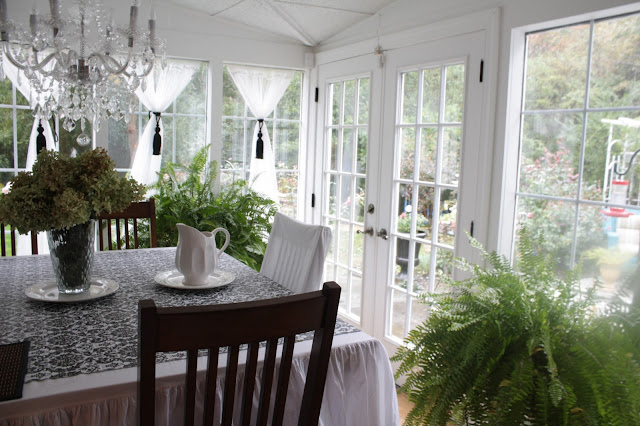 Black and white decorating, plants, winterizing