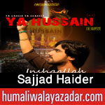http://www.humaliwalayazadar.com/2015/10/sajjad-haider-nohay-2016.html