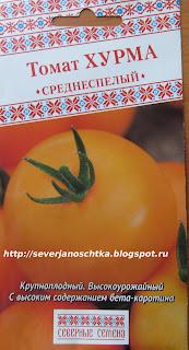 томат хурма оранжевый