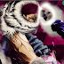 'One Piece' Preview Shock With Big Katakuri Alert