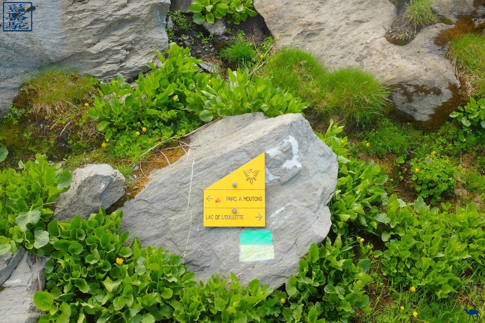 Le Chameau Bleu - Val d'Isère en été - Lac de l'ouillette Savoie