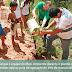 Meio Ambiente e Cras promovem plantio no Deserto do Alemão