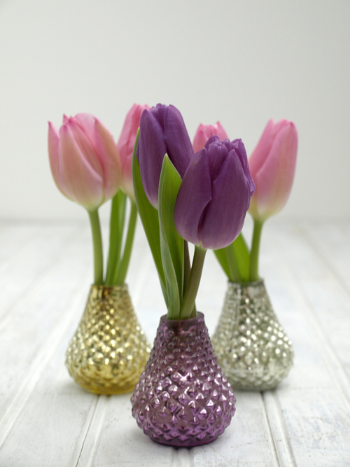 Tulips in mini vases