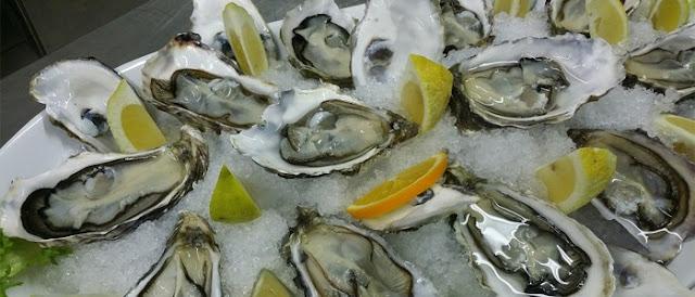 Coleta de ostras, mexilhões e berbigões são suspensas em Santa Catarina