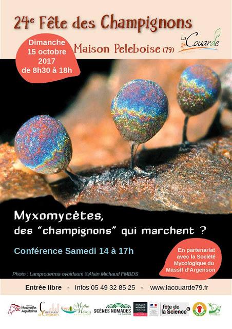 24ème Fête des champignons de La Couarde