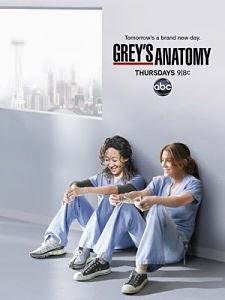 Anatomía de Grey Temporada 9 Online